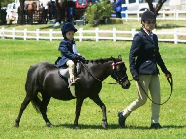 <small><b>4th Best Rider</b><br>