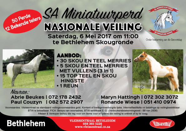 SA Miniature Horse National Sale