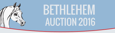 Bethlehem Auction