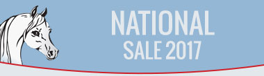 National Sale